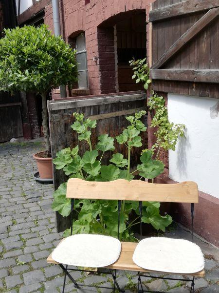 Casavita Ferienwohnung in Eschwege Urlaub in Eschwege Hotel Pension